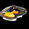 Mejillon de las Bateas de Galicia